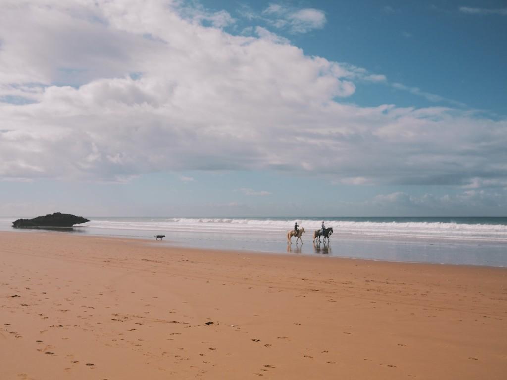 Promenade à cheval dans la baie de Taghazout